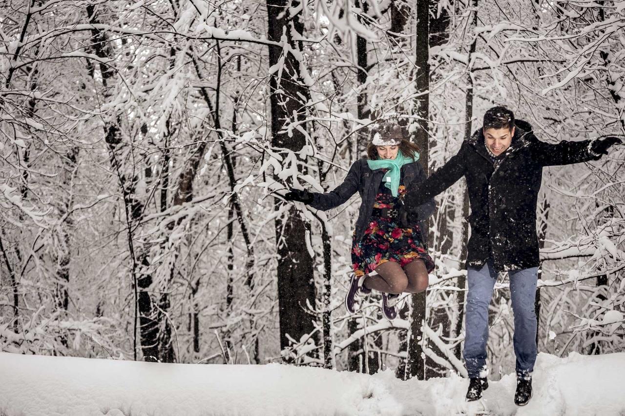 Poze nunta iarna