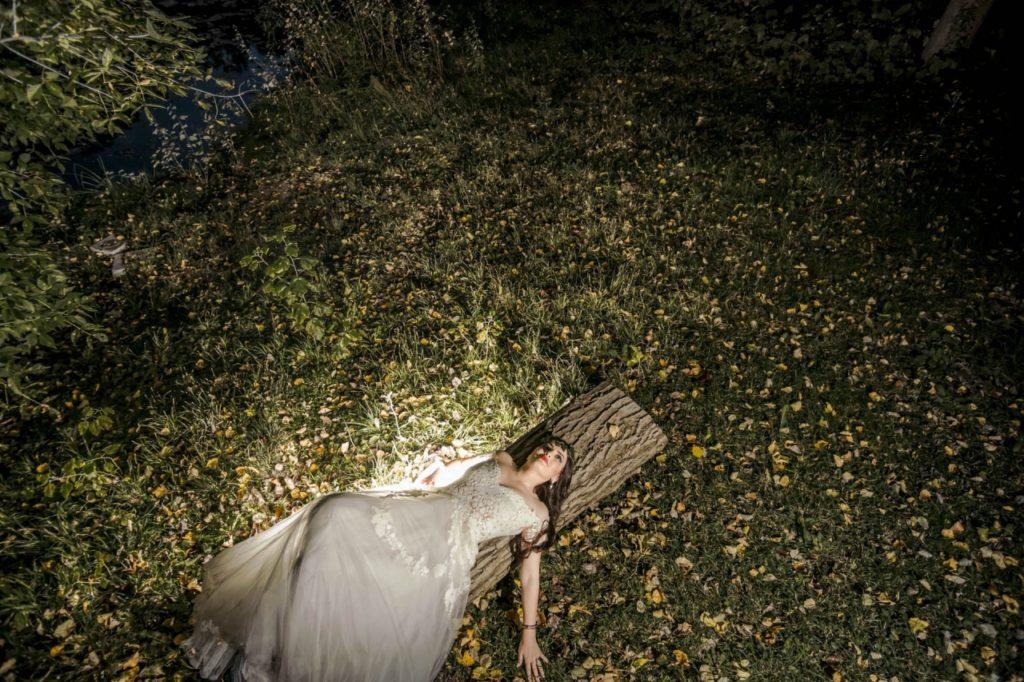 Fotograf nunta domeniul stirbey